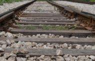 Τρένο τράκαρε με πρόβατα στο δρομολόγιο Βόλος - Λάρισα
