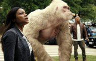 Νέες ταινίες 2018 που ΠΡΕΠΕΙ να δεις --- Rampage: Το Απόλυτο Χάος